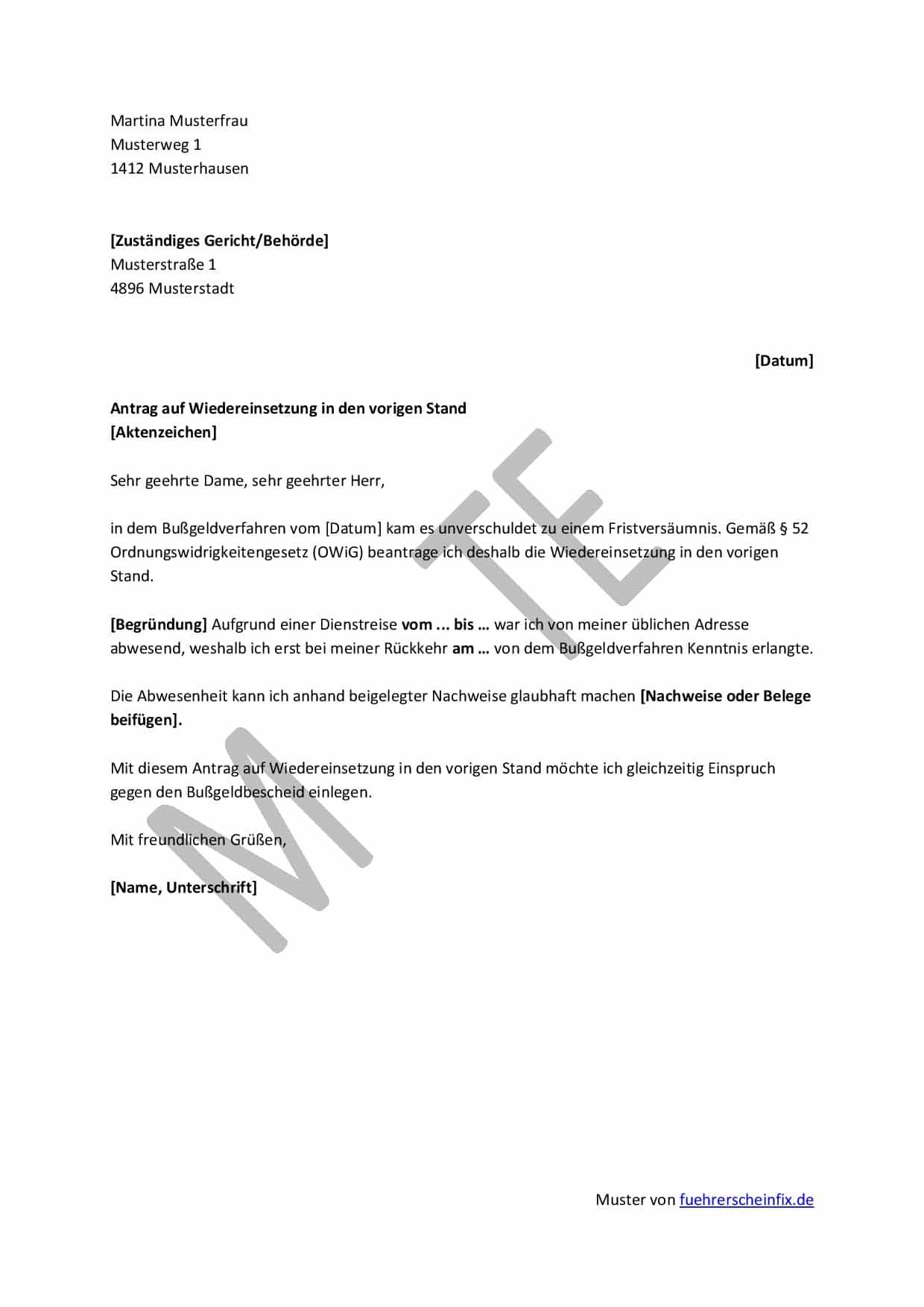 antrag auf wiedereinsetzung in den vorigen stand muster - Einspruch Gegen Busgeldbescheid Muster